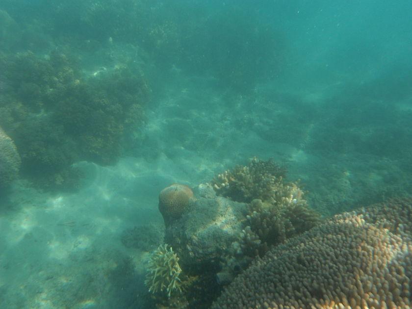 Langford Sandbar, Whitsunday Islands, Australia