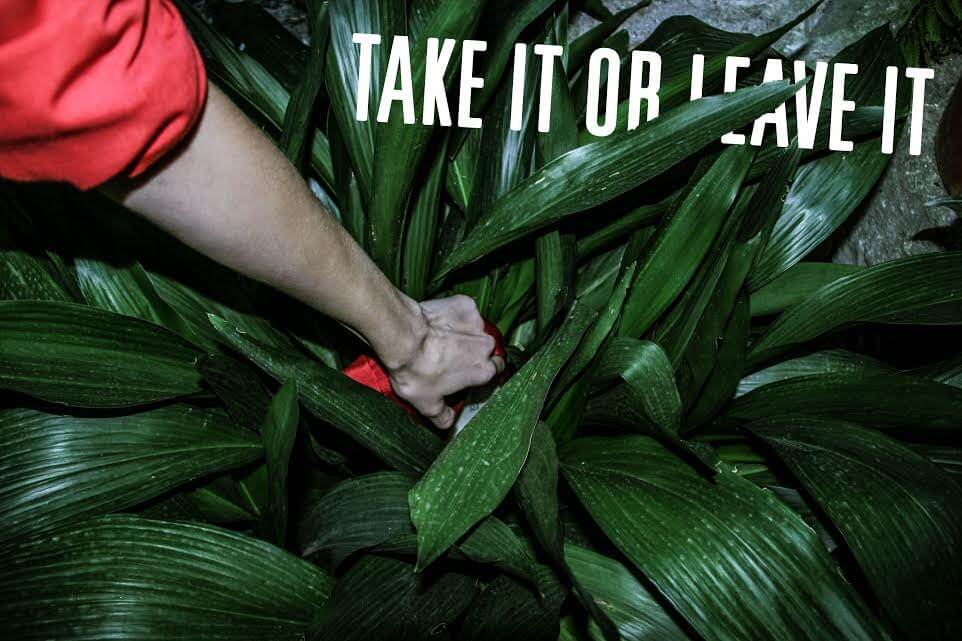 Take it or leave it - campaign shot by Maria Pincikova