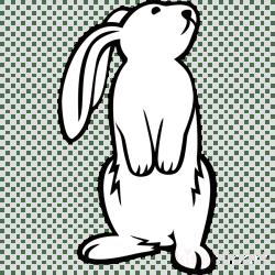 rabbit clipart bunny clip standing easter drawing coelho hd preto desenho monochrome branco transparent face pinclipart pinpng