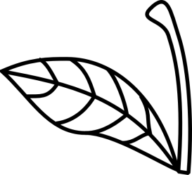 Apple Stem Clipart Png Download Full Size Clipart #49912 PinClipart
