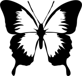 Black And White Butterfly Butterfly Clip Art Png Download Full Size Clipart #64540 PinClipart
