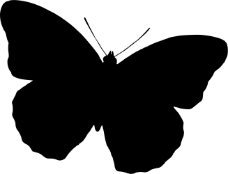 Butterfly Silhouette Drawing Black And White Free Commercial Clipart Purple Butterfly Butterfly Images Png Transparent Png Full Size Clipart #772530 PinClipart