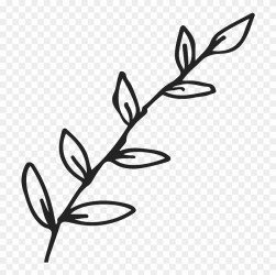 Outline Leaf Clipart Black And White