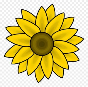 sunflower simple head outline drawing yellow sketch clip pinclipart clipart painting coloring pages drawings sunflowers middle stencils canvas printable illustration