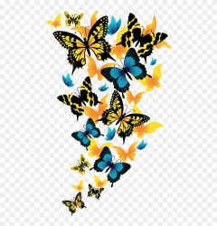 Rainbow Butterfly Clipart Clip Art Transparent Background Butterfly Png #2027072 PinClipart