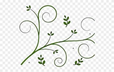 vine simple flower clipart border pinclipart