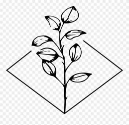 Elegant Flower Images Clipart Black And White flowers