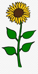 Flower Clipart Sunflower Sun Flowers Clip Art Png Download #481298 PinClipart