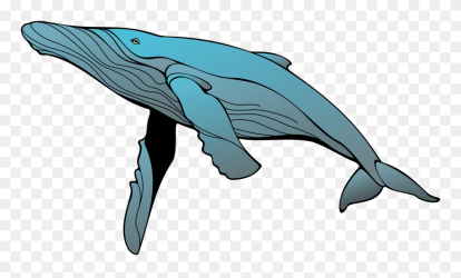 Humpback Whale Clipart Png Download #5212206 PinClipart