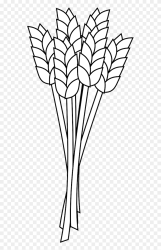 Wheat Clipart Outline Wheat Clip Art Black And White Png Download Full Size Clipart #5727742 PinClipart
