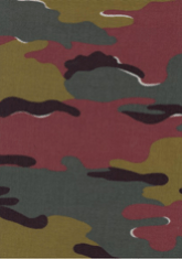 Belgium Camouflage