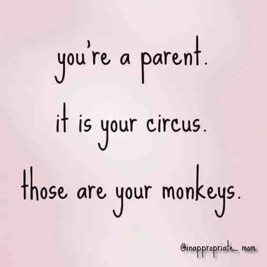 it is your circus
