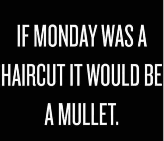 monday is a mullet