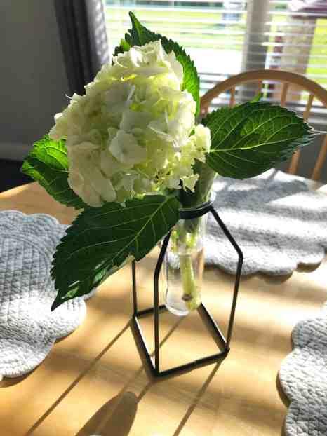 hobby lobby stem vase