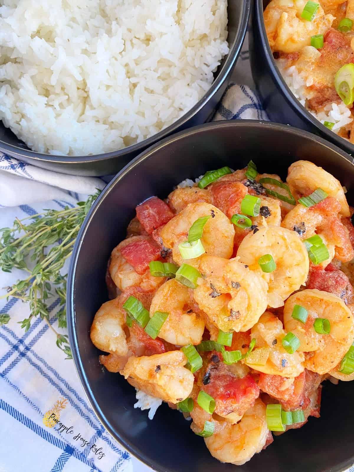 Shrimp-Creole-close-up