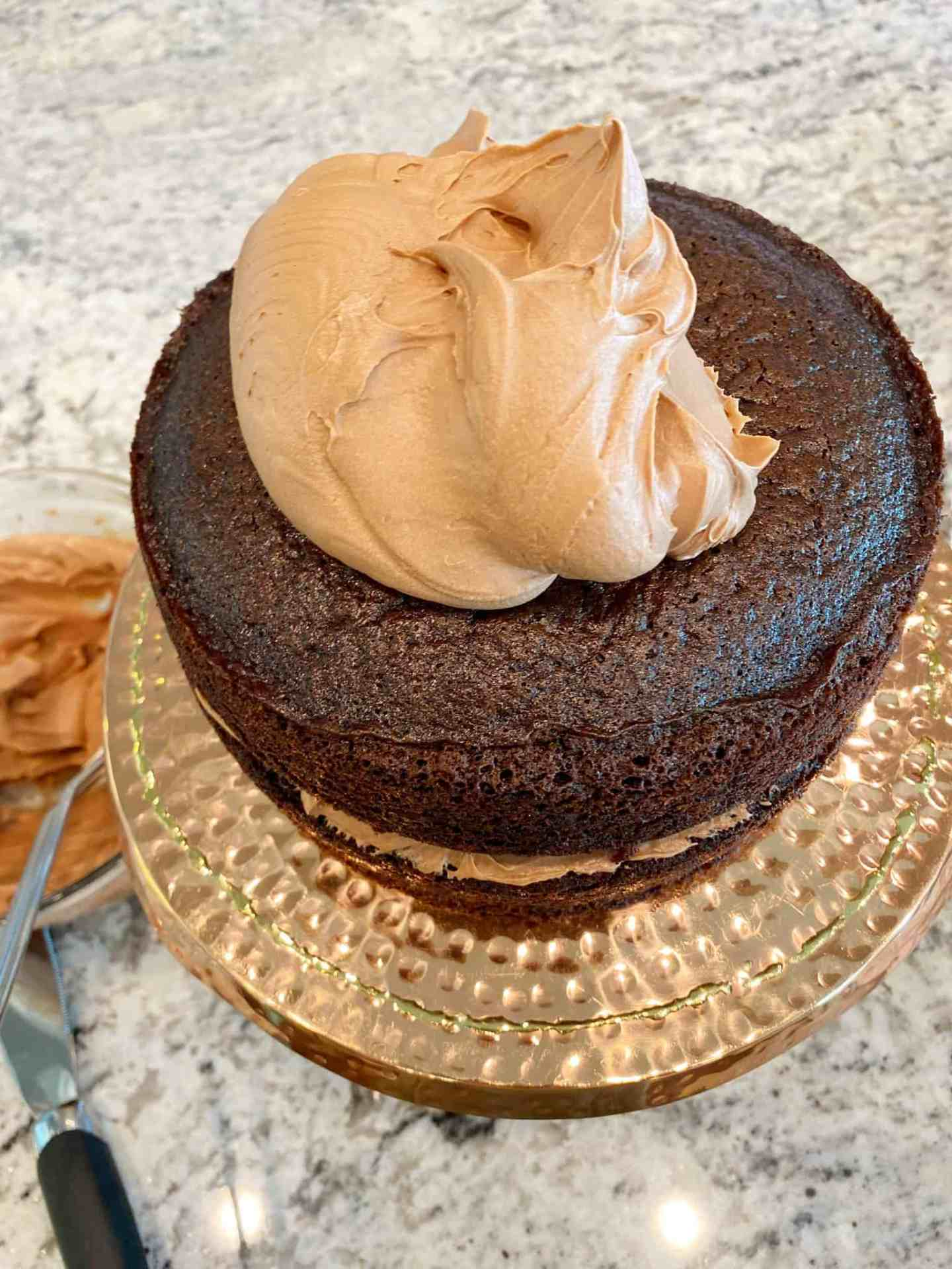 Best-Ever-Chocolate-Cake-frosting-top
