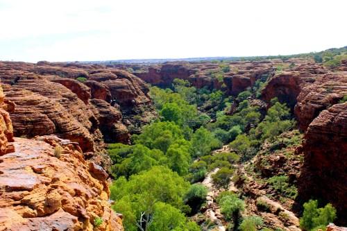 Kein Grün ohne Wasser. Im Kings Canyon liegen Wasserbecken.