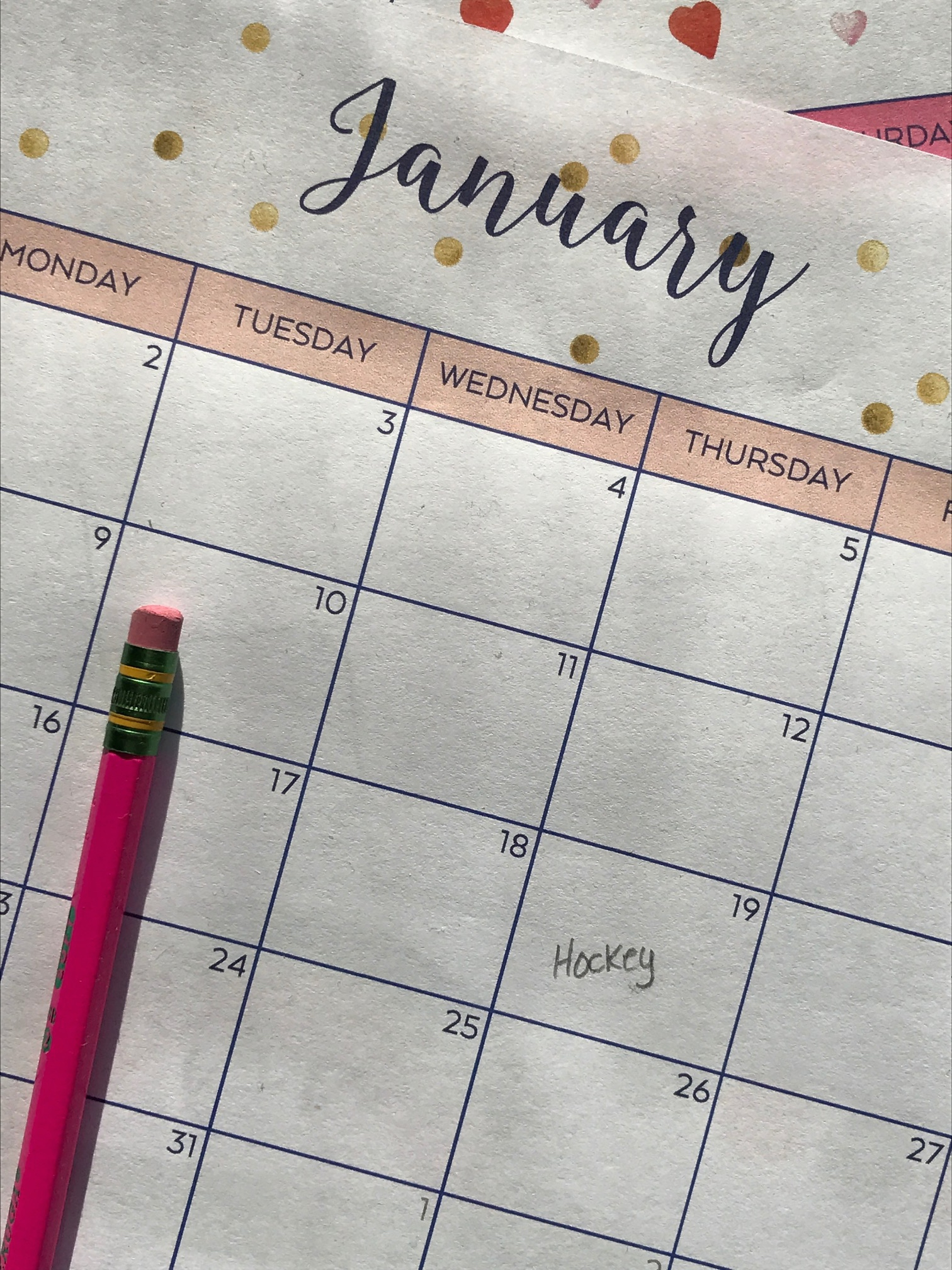 Pineapple Paper Co. {FREE} 2017 Printable Monthly Calendar