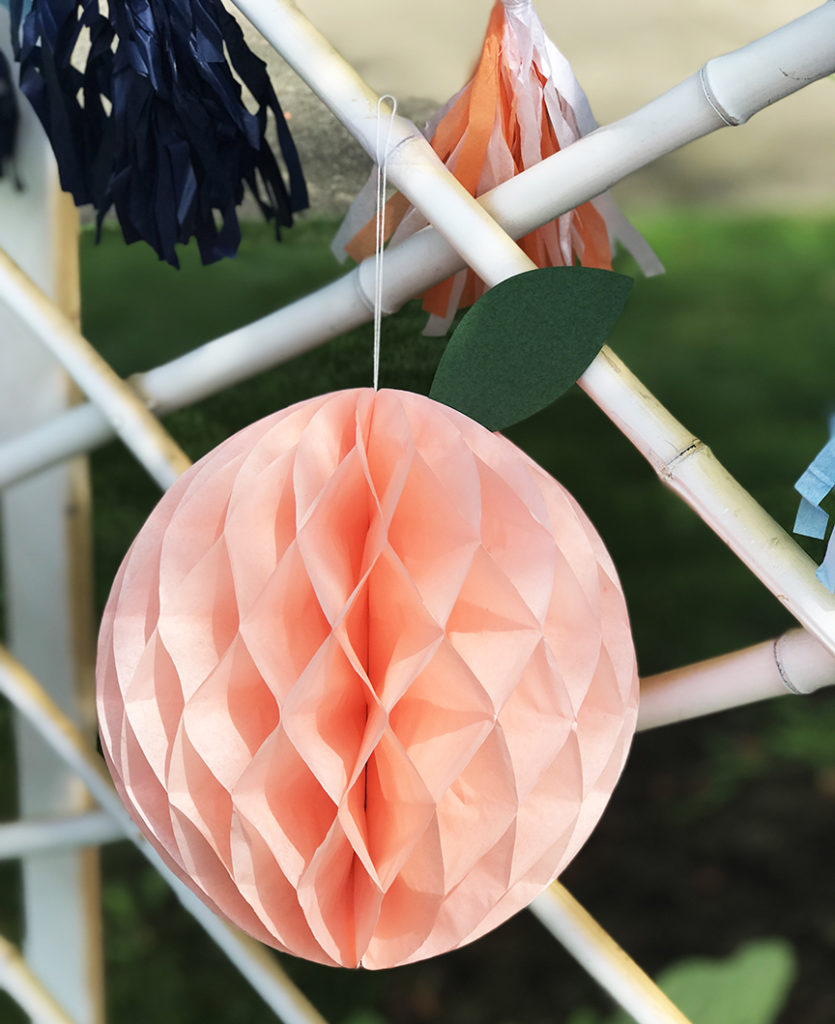 3D Peach Honeycomb by Pineapple Paper Co.