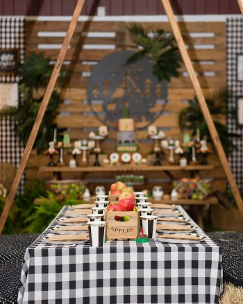 Fall Camping Party and Fall Birthday Party Ideas curated by Pineapple Paper Co.