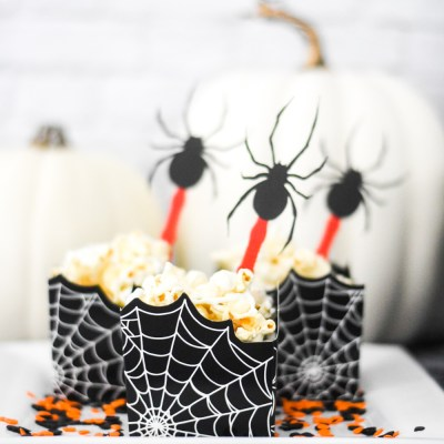 Make Spider Halloween Party Toppers with the Martha Stewart Cricut