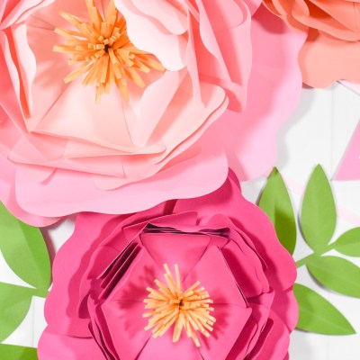 Giant Paper Flower Backdrop Tutorial