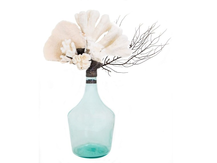 coastal design kid friendly julie dietrich coral bottle