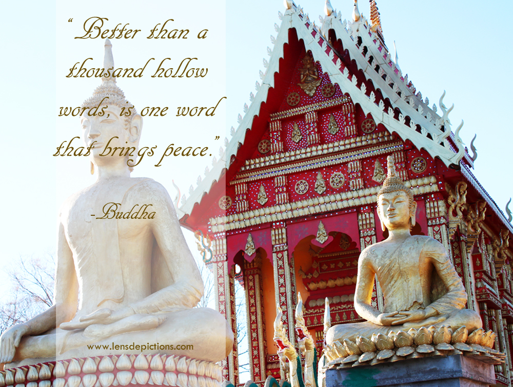 budhha-picture-quote-lensdepictions4