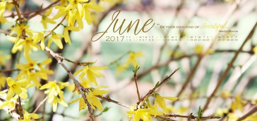 Desktop Wallpaper June 2017 Calendar