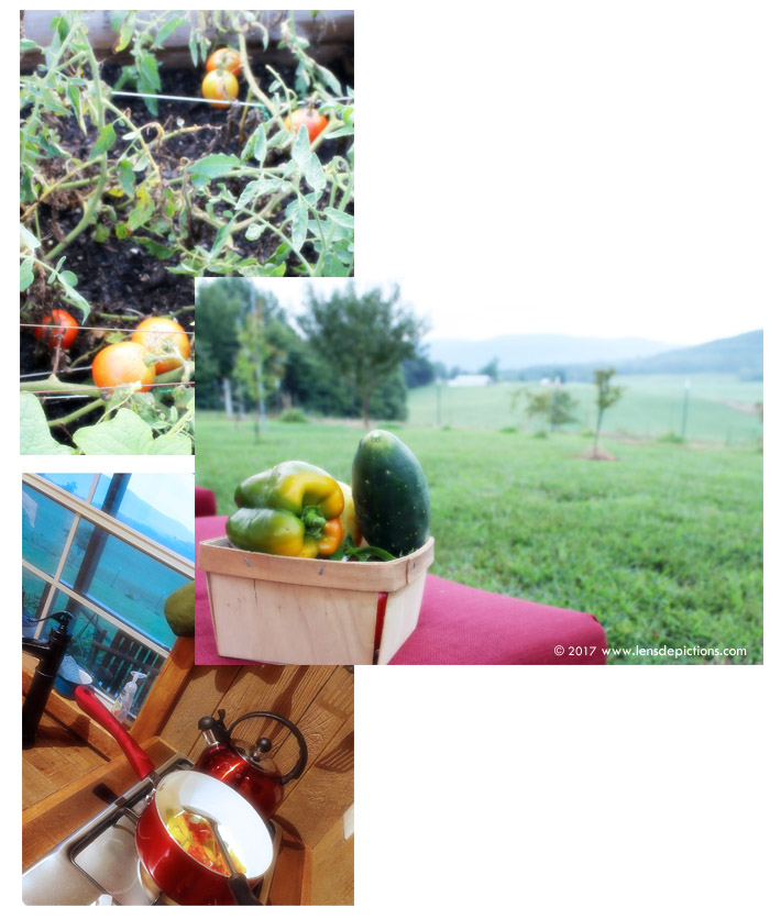 Freshproduce_Lensdepictions2