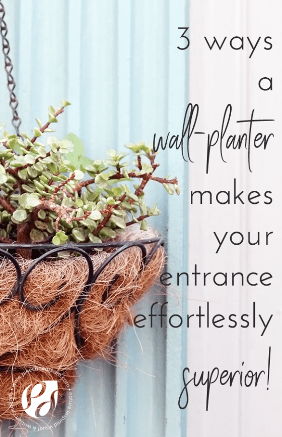 Wall planter for entrance decor