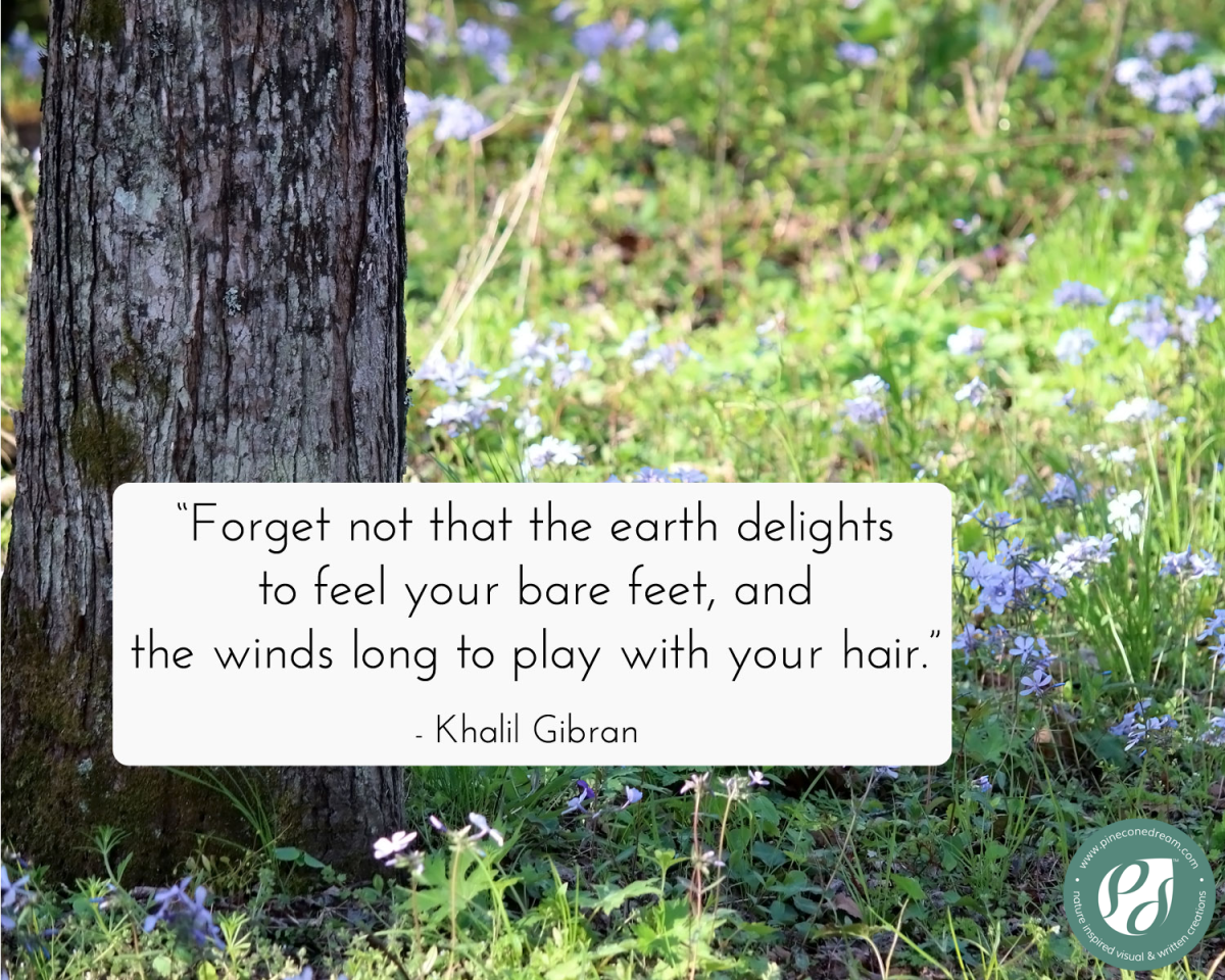 Khalil Gibran quote about being mindful with existence - with nature background