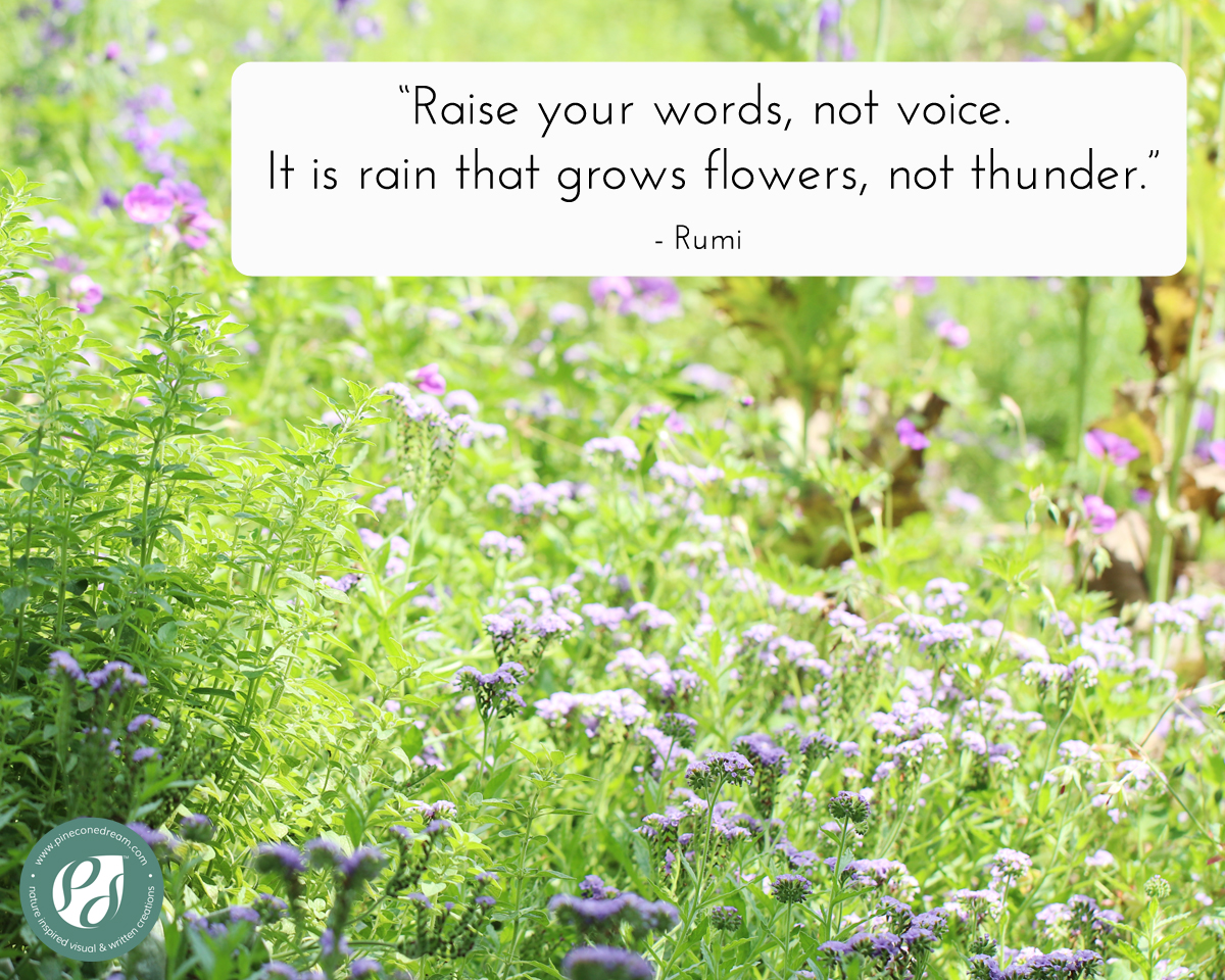 Inspirational Rumi quote with beautiful flowers picture background