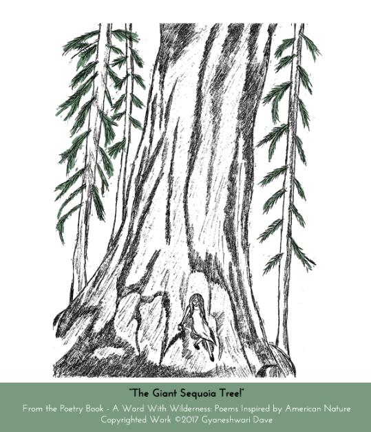 TheGiantSequoiaTree