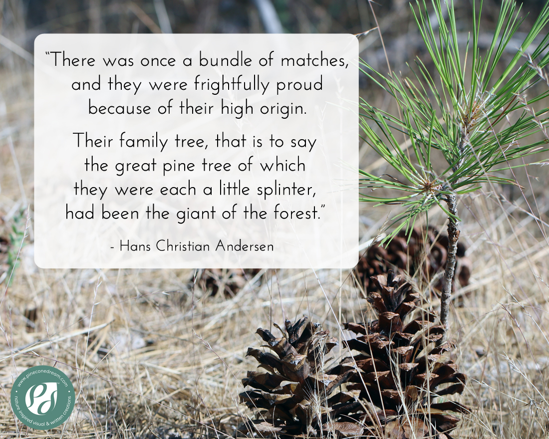 Hans Christian Andersen pine tree quote with picture