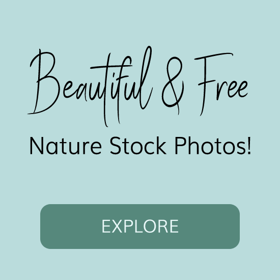 Free nature stock photos images download