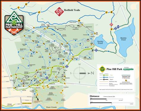 pine hill park printable trail map