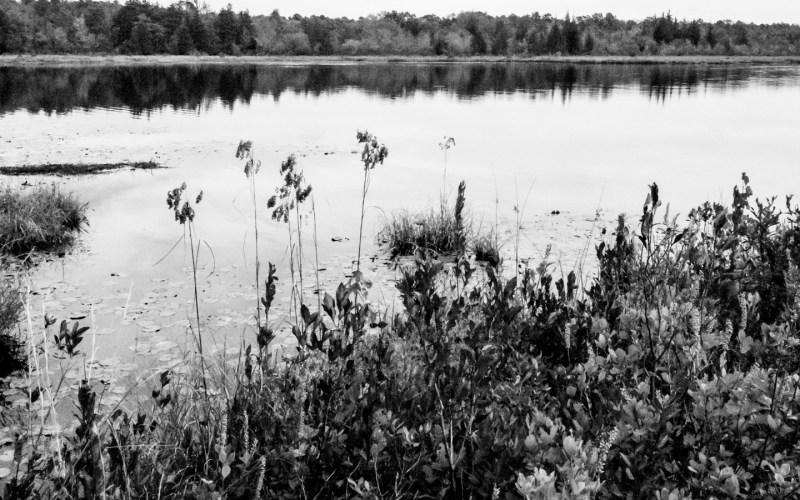franklin-parker-preserve-060027
