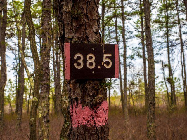 Photo 38.5 Mile marker Batona Trail