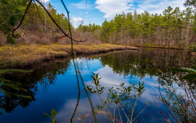 pine-lands-lake-chadsworth-3300060