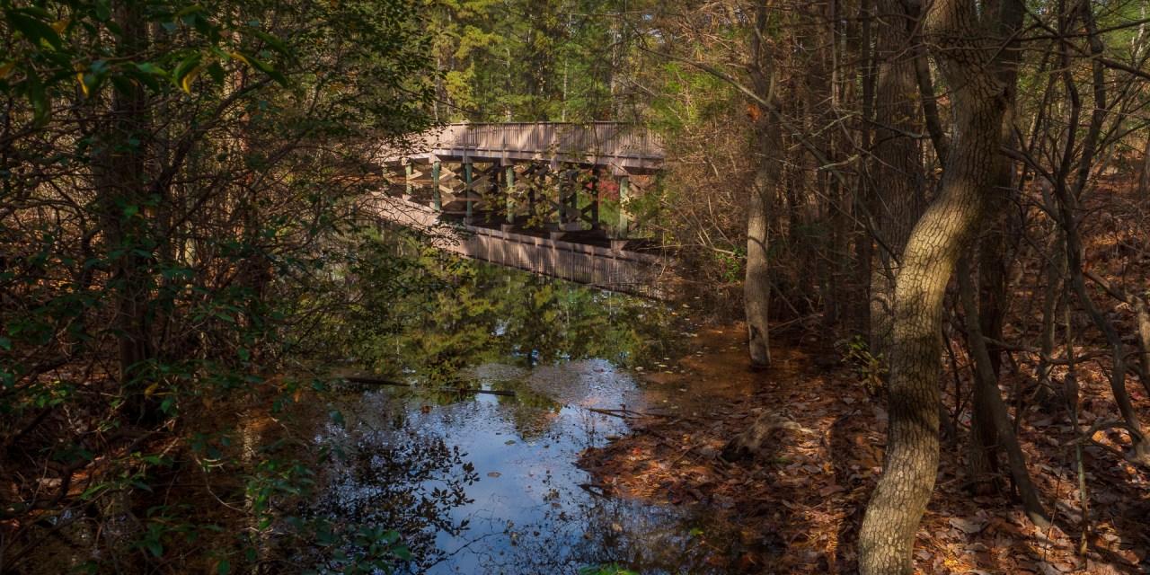 Bridge at Cedar Run Wildlife center