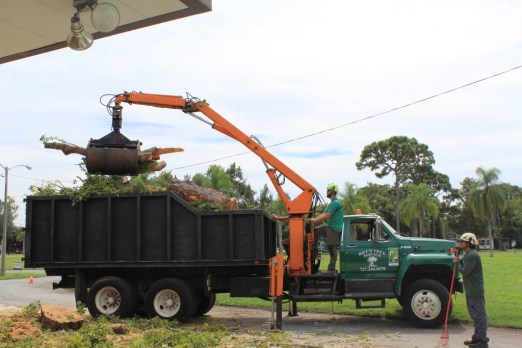 Tree Service Removal Equipment | Pinellas County