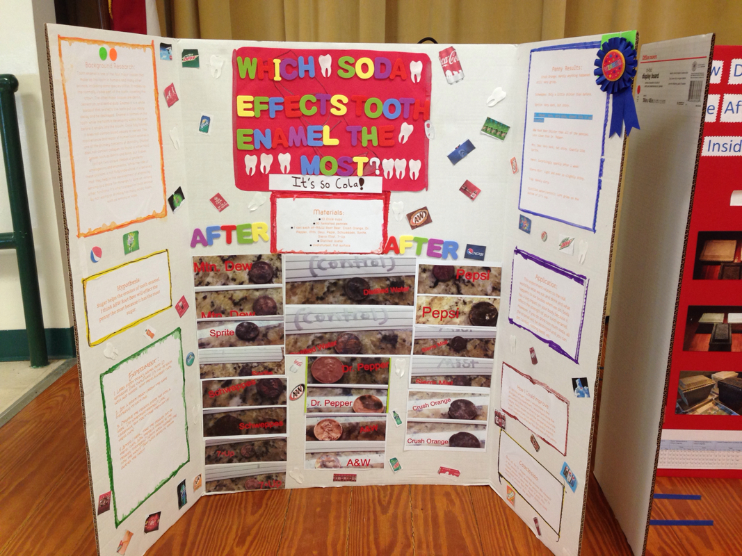 Pine Trail S Winning Science Fair Projects
