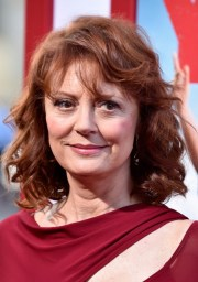 aspects of susan sarandon net