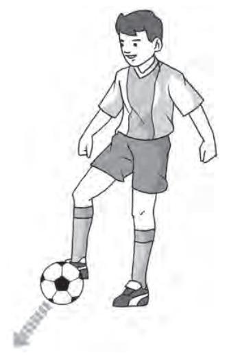 Perkenaan Bola Jika Ingin Menendang Melambung Adalah Bagian : perkenaan, ingin, menendang, melambung, adalah, bagian, 5)Olahraga, Pingkan, Putri
