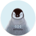 error404