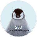 error503