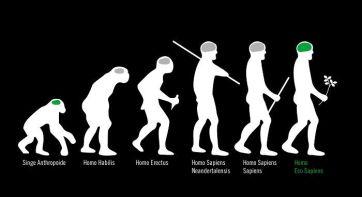 evolution 1457891694_evolution_37