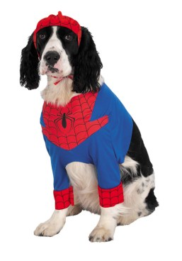 avengers assemble - version canine chien (5)