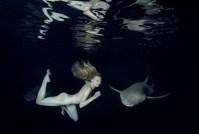 le requin et la belle